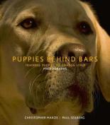 Puppies Behind Bars