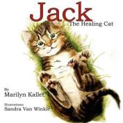 Jack the Healing Cat