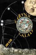 Larynx Galaxy: Prose Poems
