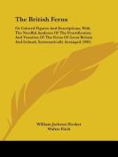 The British Ferns