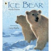 Ice Bear Pbk With Cd