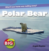 Polar Bear (The Big Picture)