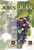 Gospel of John-PR-NLT/Ntv [Spanish]