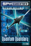 The Quantum Quandary