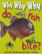 Why Why Why Do Fish Bite?