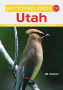 Backyard Birds of Utah