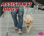 Assistance Dogs (Pebble Plus