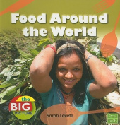 Food Around the World (Big Picture