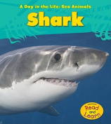 Shark (Day in the Life