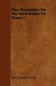 Pine Plantations on the Sand-Wastes of France