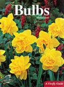 Bulbs (Firefly Guide)