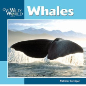 Whales (Our Wild World S.)