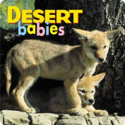 Desert Babies [Board book]