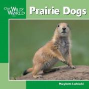 Prairie Dogs (Our Wild World