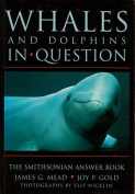 Whales and Dolphins in Question