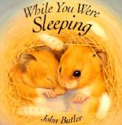 While You Were Sleeping [Board Book]