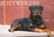 Rottweilers Postcard Book