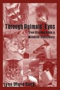 Through Animal's Eyes