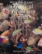 How to Keep Tropical Aquarium Fish