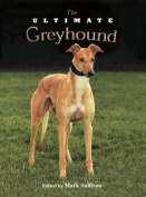 The Ultimate Greyhound