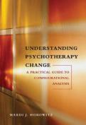 Understanding Psychotherapy Change