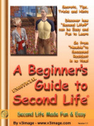A Beginner's Guide to Second Life