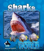 Sharks (Underwater World)