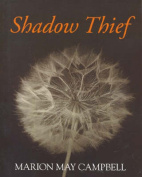 Shadow Thief
