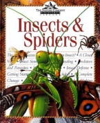 Insects and Spiders (The Nature Company