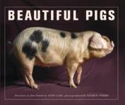 Beautiful Pigs