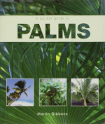 Palms (Pocket Guides)