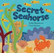Secret Seahorse (Hide-And-Seek Books