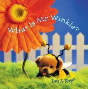 What Is Mr Winkle?