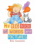 My Big Book Of Words And Pictures Board [Board book]