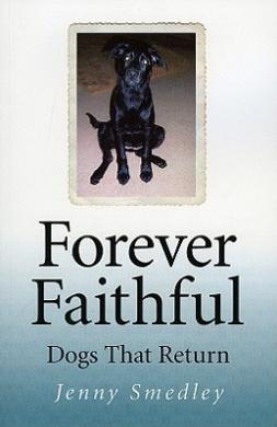 Forever Faithful: Dogs That Return