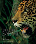Rainforest Safari