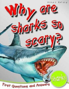 1st Questions and Answers Sharks