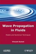 Wave Propagation in Fluids