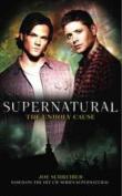 Supernatural: Unholy Cause