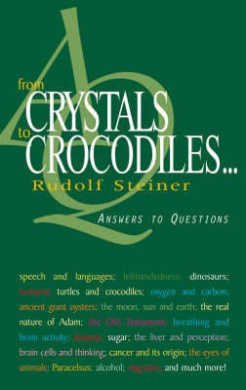 From Crystals to Crocodiles . . .: Answers to Questions