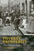 Poverty Amidst Prosperity