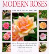 Modern Roses