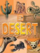 Desert (What Can I See S.)
