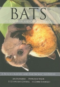 Bats of Central and Southern Africa