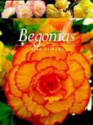 A Begonias
