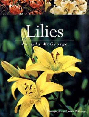 Lilies (New Zealand Gardener's Guide)
