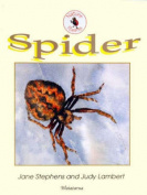 Spider (Nature Poem Series)