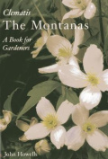 Everyone's Clematis - The Montanas
