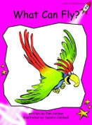 What Can Fly