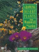 Growing Desert Plants